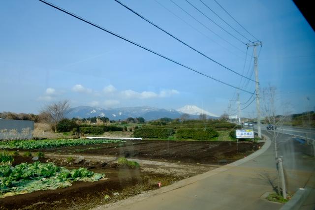 0217_izu.jpg
